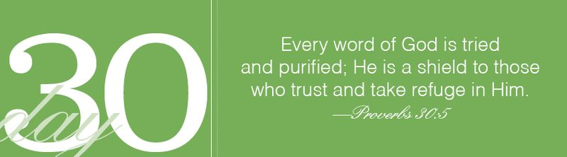 Proverbs31_day30