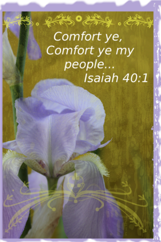 Comfort one another scaled