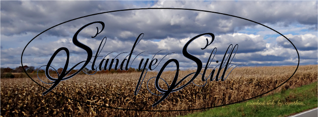 Grains under Hurricane Sandy skies cr stand ye still scld