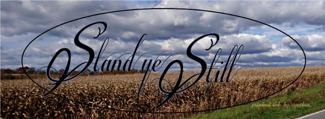 Grains under Hurricane Sandy skies cr stand ye still scld