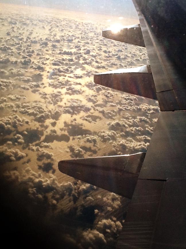 Hurricane sandy flight home