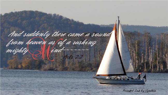 Sailing vessel w vs n sig