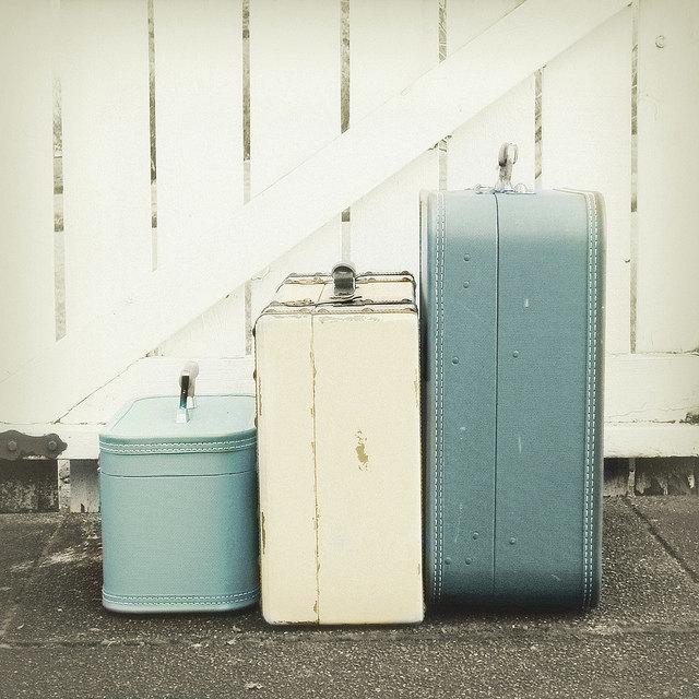 Simply Hue Designs_ Luggage